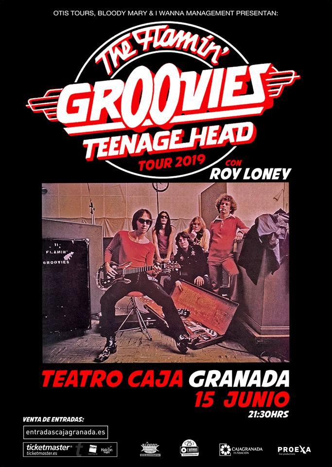 flammin groovies granada teenage head